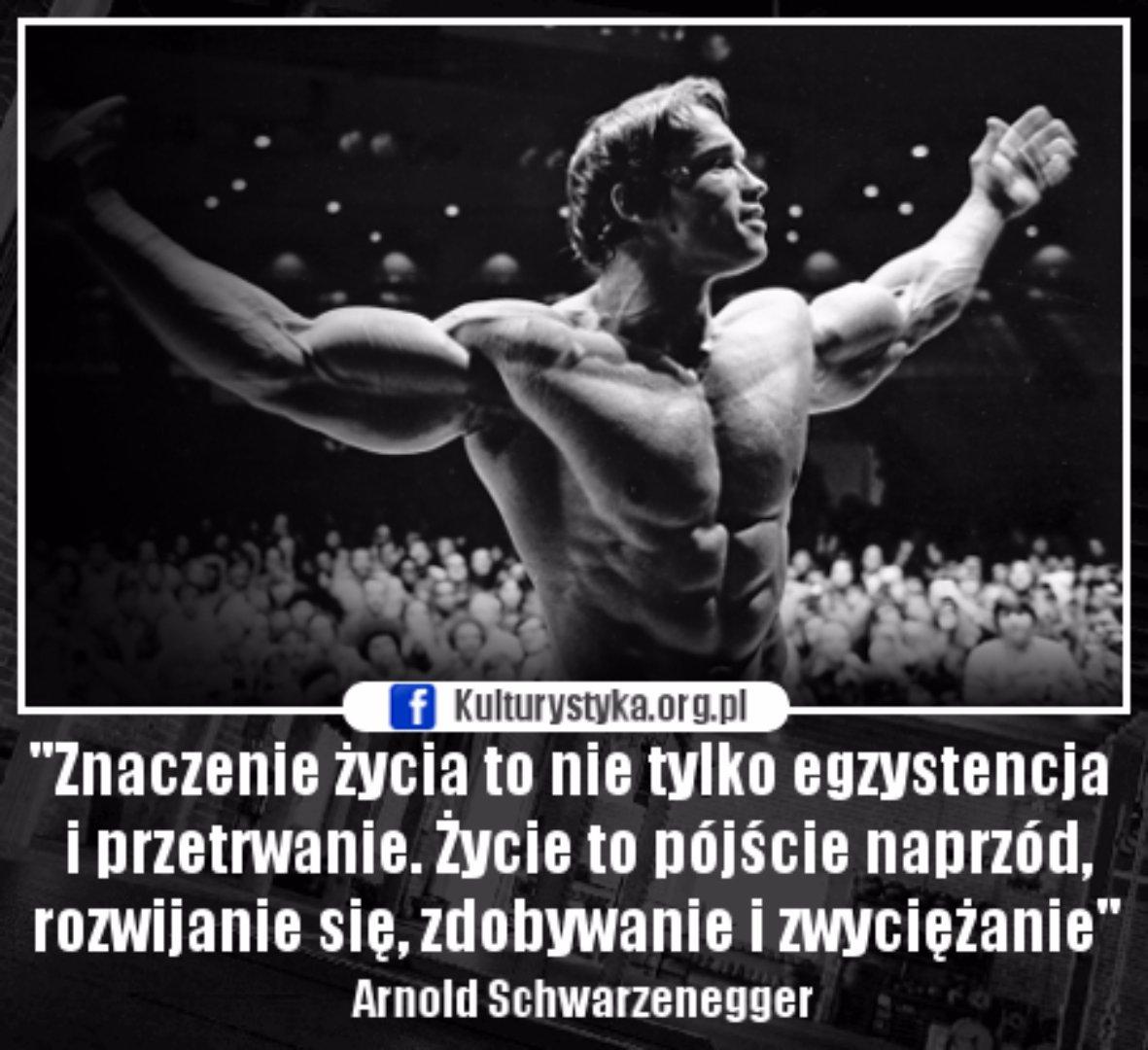 Motywacja Treningowa Memy I Cytaty Motywujące Do Treningu Arnold