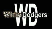 Tiesto - knock you out ( White Dodgers Remix).wmv