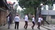 I will survive - Dancing Auschwitz
