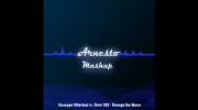 Giuseppe Ottaviani vs. Dave 202 - Through the Waves (Arnesto Mashup)